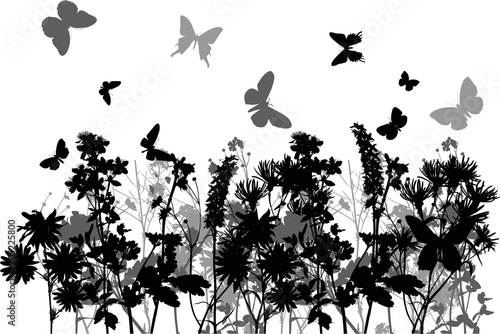 butterflies above  flowers black and grey silhouettes - 205225800