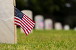 Quadro Small American flags and headstones at National cemetary- Memorial Day display