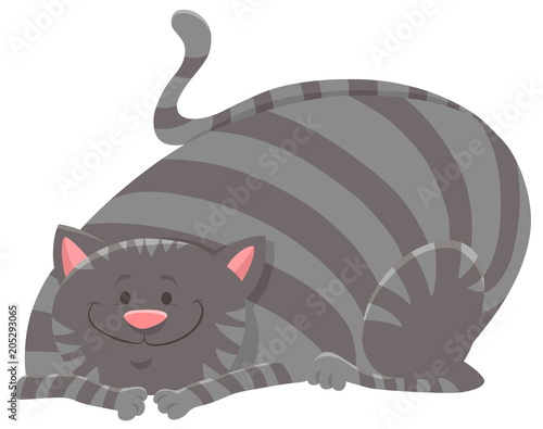 Fridge magnet happy tabby cat cartoon animal character