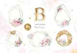 Hand drawing isolated watercolor floral illustration with protea rose, leaves, branches and flowers. Bohemian gold crystal frames. Elements for greeting wedding card. - 205300405