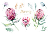 Hand drawing isolated watercolor floral illustration with protea rose, leaves, branches and flowers. Bohemian gold crystal frames. Elements for greeting wedding card. - 205300858