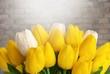 Quadro Tulip.
