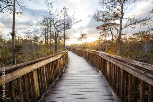 Plexiglas Galyna A. Boardwalk in Everglades