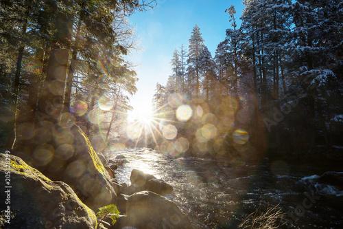 Plexiglas Galyna A. Early spring in Yosemite