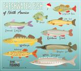 Freshwater Fish of North America - 205333269