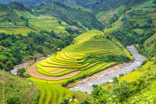 Fotobehang Rijstvelden Beautiful rice field terraced at Mu Cang Chai, Yen Bai, during trip HANOI to SAPA Northwest Vietnam