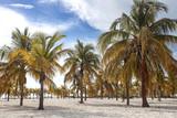Playa Serena a Cayo Largo, Cuba