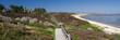 Panorama Braderuper Heide auf Sylt im Frühling sonnig
