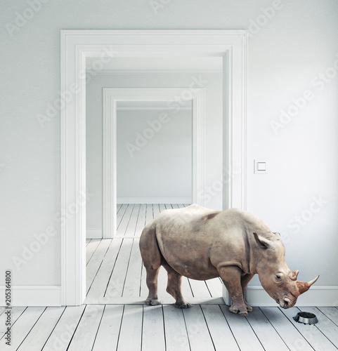 Fotobehang Neushoorn Rhino in the room.