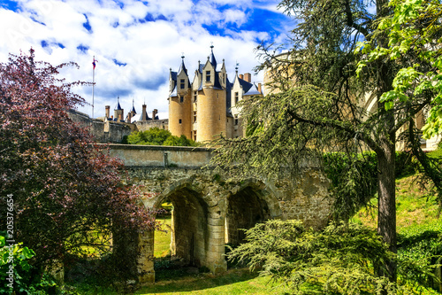 Aluminium Freesurf Medieval castles of Loire valley - beautiful Montreuil-Bellay. France
