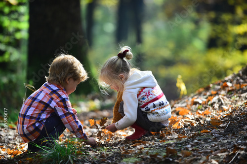 Childhood and child friendship. Children pick acorns from oak trees. Brother and sister camping in autumn forest. Little boy and girl friends have fun on fresh air. Kids activity and active rest
