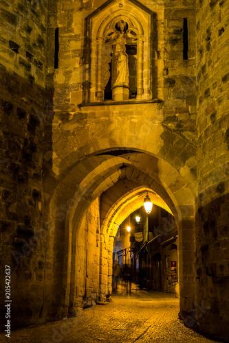 Carcassonne, la cité de nuit, Occitanie, France.