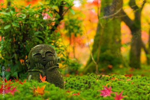Plexiglas Kyoto 圓光寺 地蔵 紅葉