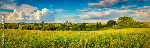 Canvas Honing Rural landscape. Panorama