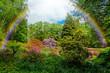 Beautiful  garden.  city park with rainbow