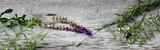 Gartenkräuter auf Holz - 205489893