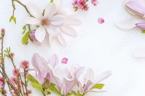Fototapeta Beautiful background with pink magnolia flowers and peach blossom on white backgroud with copy space