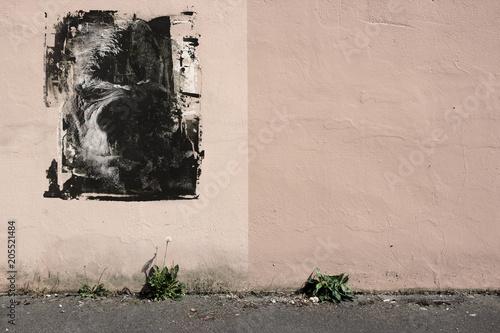 Graffiti Gorilla Affe Gesicht  Street Art