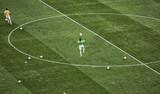 close up of soccer field grass - 205560017