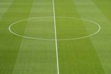 close up of soccer field grass - 205560290