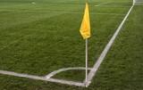close up of soccer field grass - 205560498