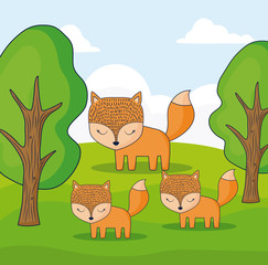 cute foxes in a forest, colorful design. vector illustration