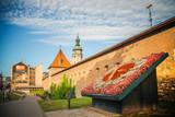 Flower clock near Bernardine church in Lviv, Ukraine - 205611613