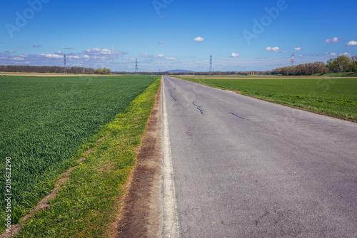 Fotobehang Lente Asphalt road among fields near Mannsdorf an der Donau village, Austria