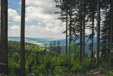 Blick vom Berg in das Thal aus dem Wald mit Woilken am Himmel im Bayerischen Wald
