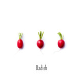 Fresh spring Radishes on white background - 205654468