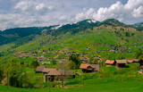 Typical Switzerland countryside landscape at spring time