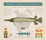 Alligator Gar - 205735642