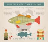 Largemouth Bass - 205735673