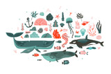Hand drawn vector abstract cartoon graphic underwater world big illustrations collection set with coral reefs,beauty killer whale,whale,jellyfish,fishes,seaweeds,corals isolated on white background - 205741238