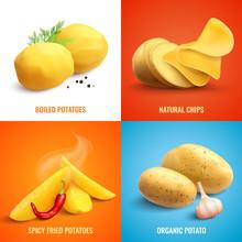 Potato Realistic 2x2 Design Concept Sticker
