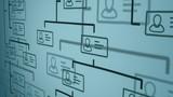 organization chart concept - 205754691