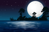 A Full Moon Night at the Lake