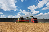 Combine working on a wheat field. Combine harvester in action on wheat field. - 205784238