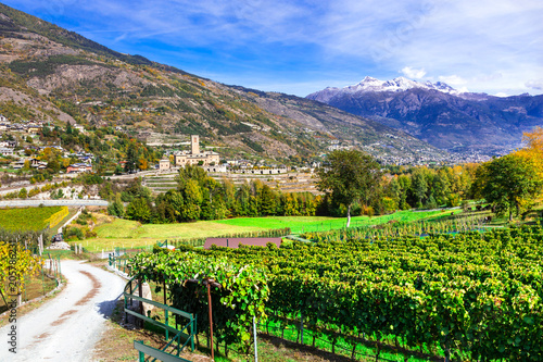 Aluminium Freesurf Castles and wineyards of Valle d'Aosta. Castello Reale di Sarre, Italy