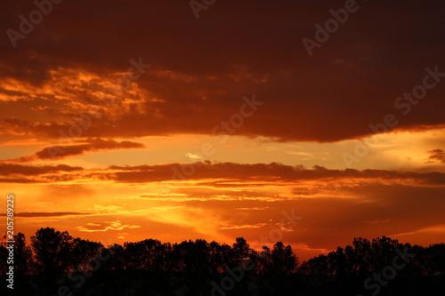 Fotobehang Bruin deep orange sunset 1