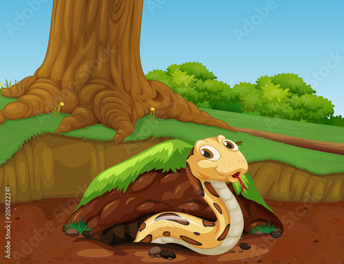Fotobehang Kids A Vector of Snake in the Nature