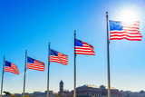Flags of the United States waving over blue sky in Washington DC - 205824224