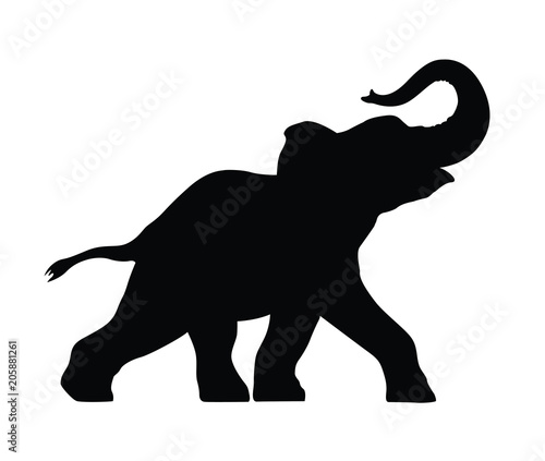 Fototapeta silhouette of a small elephant