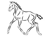 A sketch of a trotting foal. - 205886008
