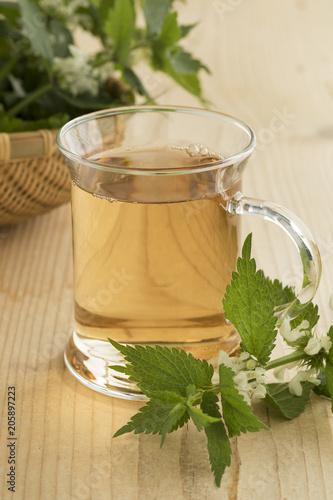 Szkło zdrowej białej martwej pokrzywy herbaty