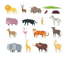 Cartoon African Savannah Animals Wild Zoo Safari Mammals Reptiles And Birds  Set    Sticker