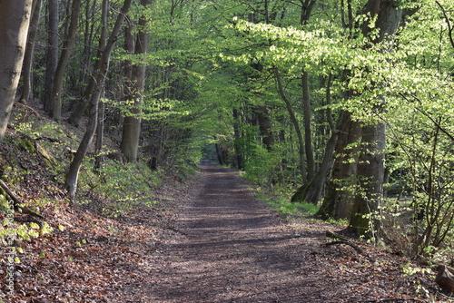 Aluminium Weg in bos Wadgassen Allemagne 66787