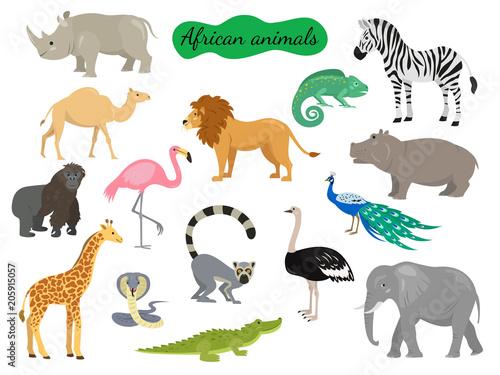 Obraz na płótnie Set of african animals on white background.