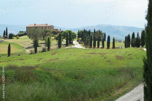 Plexiglas Pistache The enchanted Val d'Orcia, Siena, Tuscany, Italy