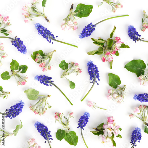 Beautiful flower pattern composition on white background, top view, flat lay. concept spring, summer, Mother's Day holiday, March 8.